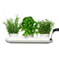 Sagaform potrójny wazon na zioła